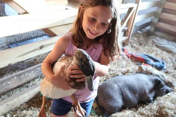 A girl holding a duck inside a barn
